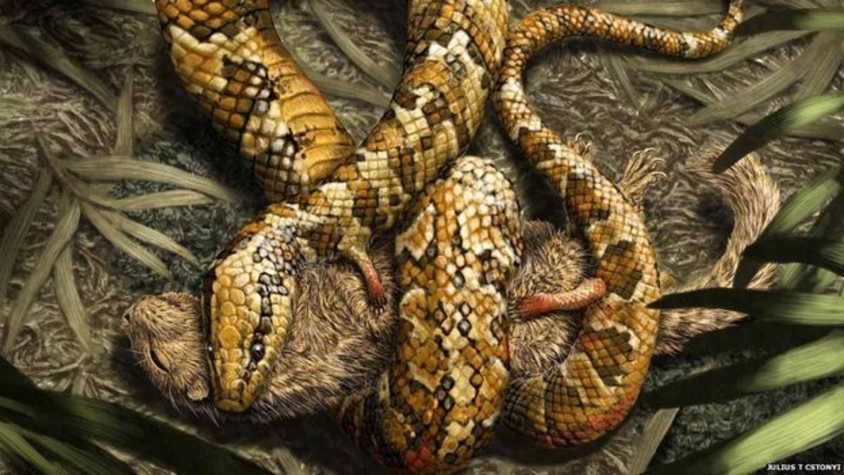Arqueólogos Descubren cómo era la Serpiente antes de que Dios la ...